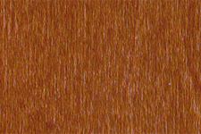 NGR DYE - MEDIUM WALNUT