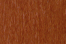 NGR Dye Light Red Mahogany