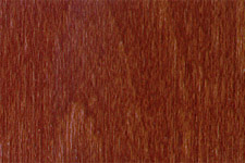 NGR Dye MEDIUM MAHOGANY