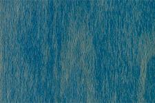 BLUE NGR